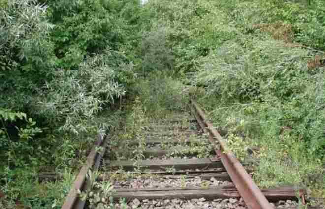 Rail Dilove Zhest 1