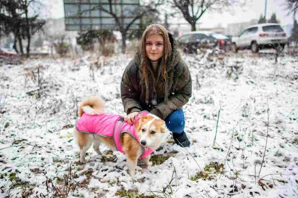 Боротьба за життя: 5 неймовірних історій про тварин з ужгородського притулку Барбос, фото-7