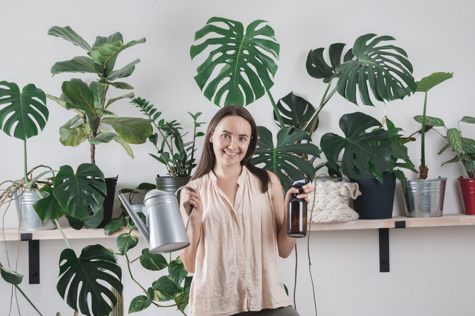 Woman Is Taking Care Of Houseplants. Urban Jungle Interior