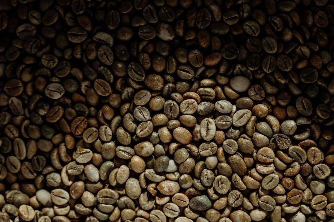 River Coffee Champ 3